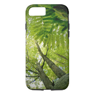 Forest scene in Acadia National Park, Maine. iPhone 7 Case
