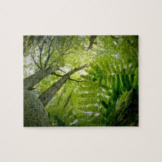 Forest scene in Acadia National Park, Maine. Jigsaw Puzzle