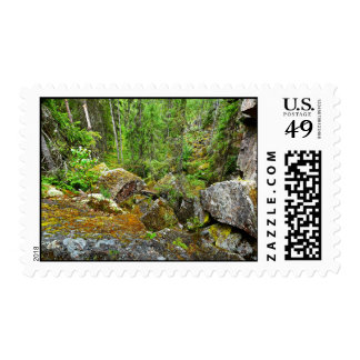Forest scene in Finland Postage