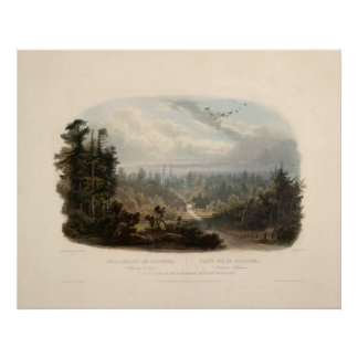 Forest scene on the Tobihanna, Alleghany Mountains Poster