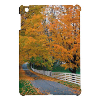 Forest Scenic Backroad Cover For The iPad Mini