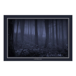 Forest Shadows Poster