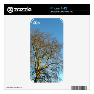 Forest Skin For iPhone 4S