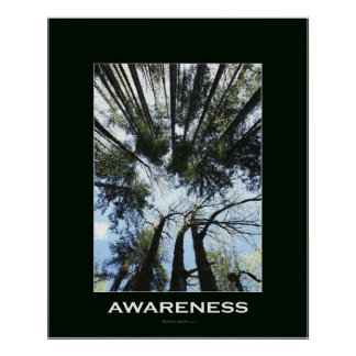 """FOREST & SKY """"AWARENESS """" Wall Poster"""