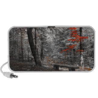 forest sp Speaker