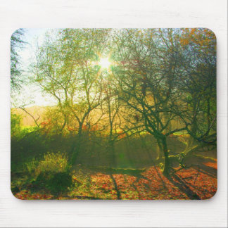 Forest Spectrum Mouse Pad