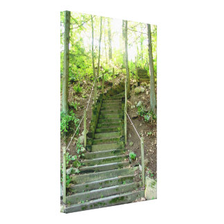 Forest stairs Gloss Canvas Print