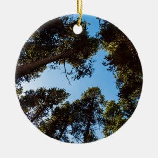 Forest Star Ceramic Ornament