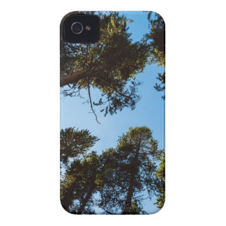 Forest Star iPhone 4 Cover