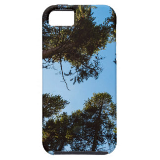 Forest Star iPhone SE/5/5s Case