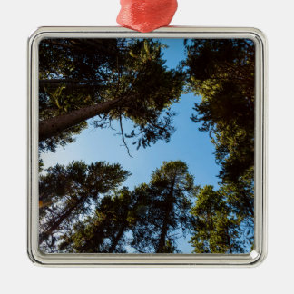 Forest Star Metal Ornament