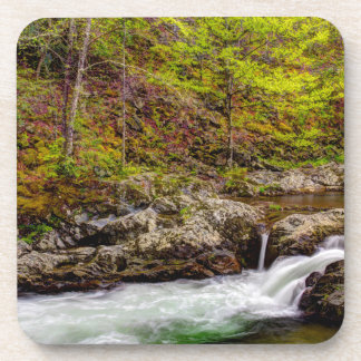 Forest Stream In Great Smoky Mountains Beverage Coaster