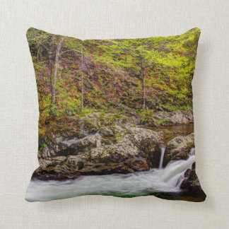 Forest Stream In Great Smoky Mountains Pillows