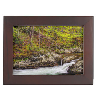 Forest Stream In Great Smoky Mountains Memory Box