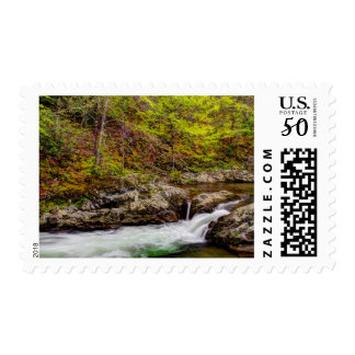 Forest Stream In Great Smoky Mountains Postage