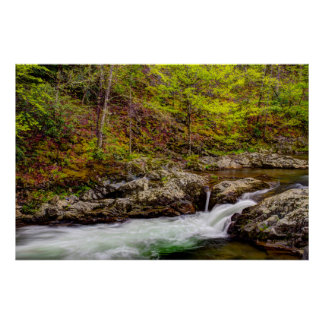 Forest Stream In Great Smoky Mountains Posters