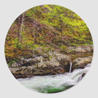 Forest Stream In Great Smoky Mountains Classic Round Sticker