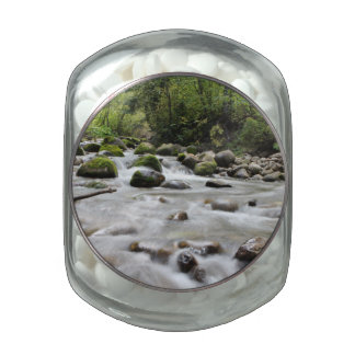 Forest Stream tins & jars Glass Candy Jars