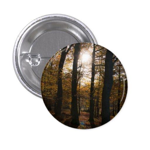 Forest sun button