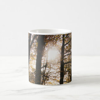 Forest sun coffee mug