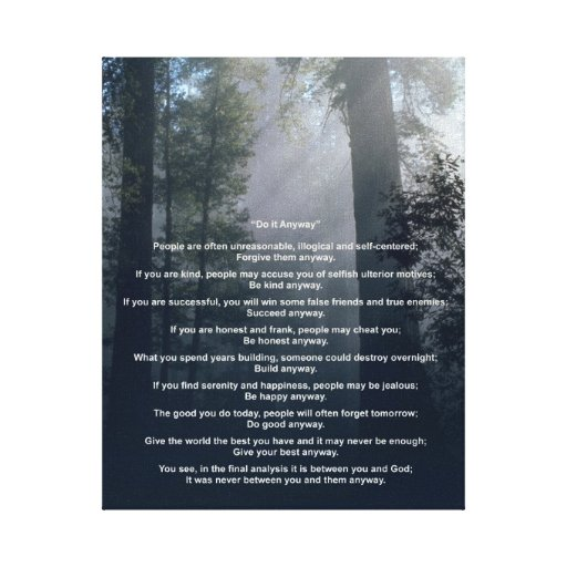 Forest & Sun Do It Anyway Stretched Canvas Prints