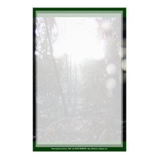 Forest Sun Rays in the Snow #64 Customized Stationery