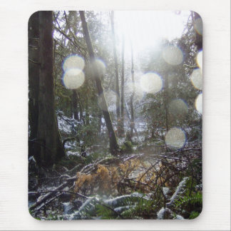 Forest Sun Rays in the Snow # 68 Mouse Pad