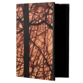 Forest Sunrise Abstract Cover For iPad Air