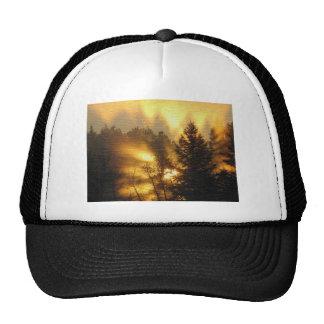 Forest Sunrise Trucker Hat