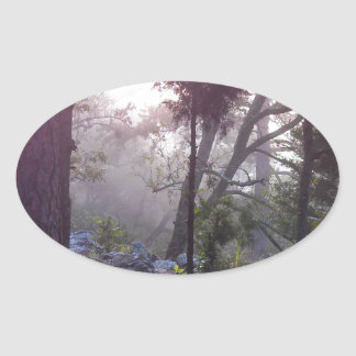 Forest Sunrise Oval Sticker
