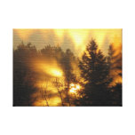 FOREST SUNRISE STRETCHED CANVAS PRINT