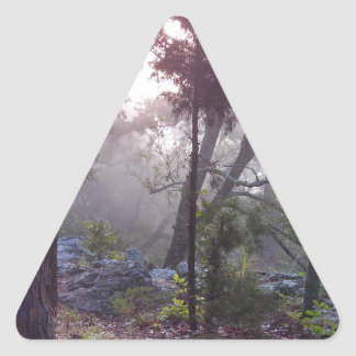 Forest Sunrise Triangle Sticker