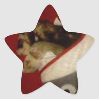 Forest the Ferret and Bandit the Ferret Sleeping Star Sticker