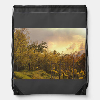 Forest Themed, A Densly Covered Forest With Severa Backpacks