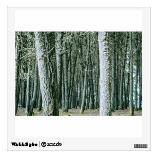 Forest Themed, Ghostlike Forest Of Dry Large Trees Wall Decal
