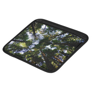 Forest Themed, View Of Treetops From Floor Of Fore Sleeve For iPads