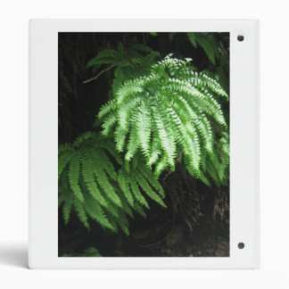 Forest Trail 3 Ring Binder
