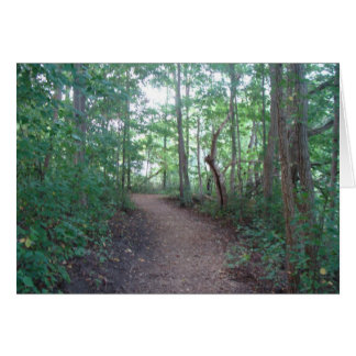 Forest Trail Blank Greeting Card