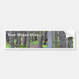 Forest Trail Bumper Sticker