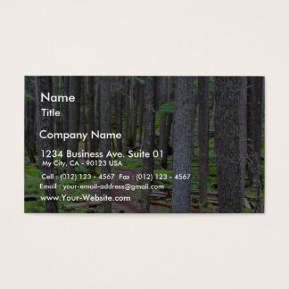 Forest Trail Business Card