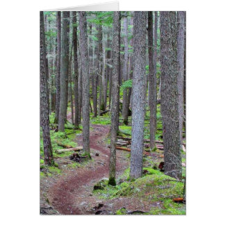 Forest Trail Card