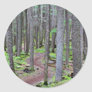 Forest Trail Classic Round Sticker