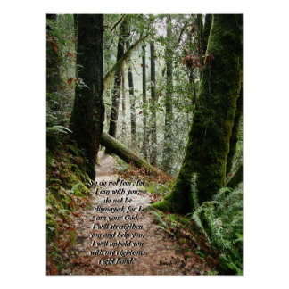 Forest Trail Isaiah 41:10 Print
