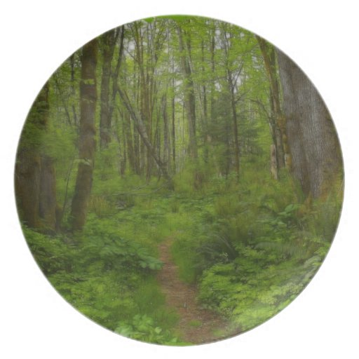 Forest Trail Nature-lovers Plate