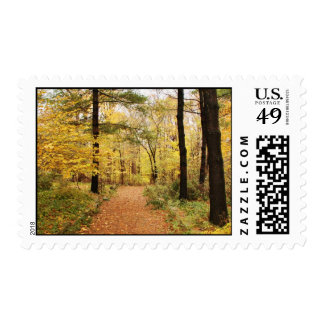 Forest Trail Path Stamp