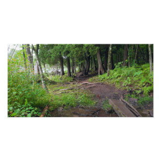 Forest Trail Through Jay Cooke Park Personalized Photo Card