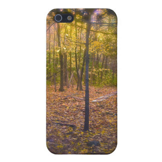 Forest Trail Vermont Foliage iPhone SE/5/5s Case