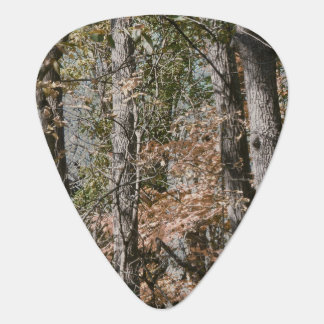 Forest Tree Camo Camouflage Nature Hunting/Fishing Guitar Pick