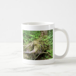 Forest Tree Growth Coffee Mug