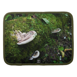 Forest Tree Mushrooms Organizers
